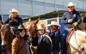 Foto in style country a Fieracavalli