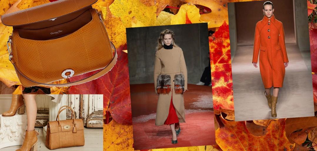 Colori moda autunno/inverno 2015-2016