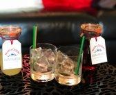 Un Aperitivo tra Amiche con Glass & Cheers, il Servizio Cocktail a Domicilio