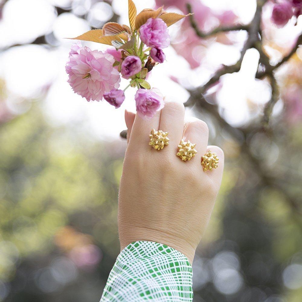 Foto di anello di Giulia Barela