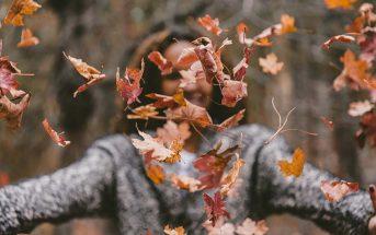 Foto dell'autunno